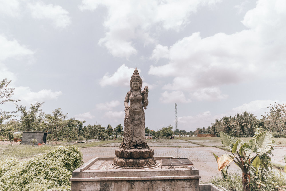 ubud-monkey-forest-by-lisa-linh