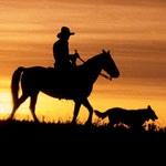 Travel - Dog-friendly Dude Ranch