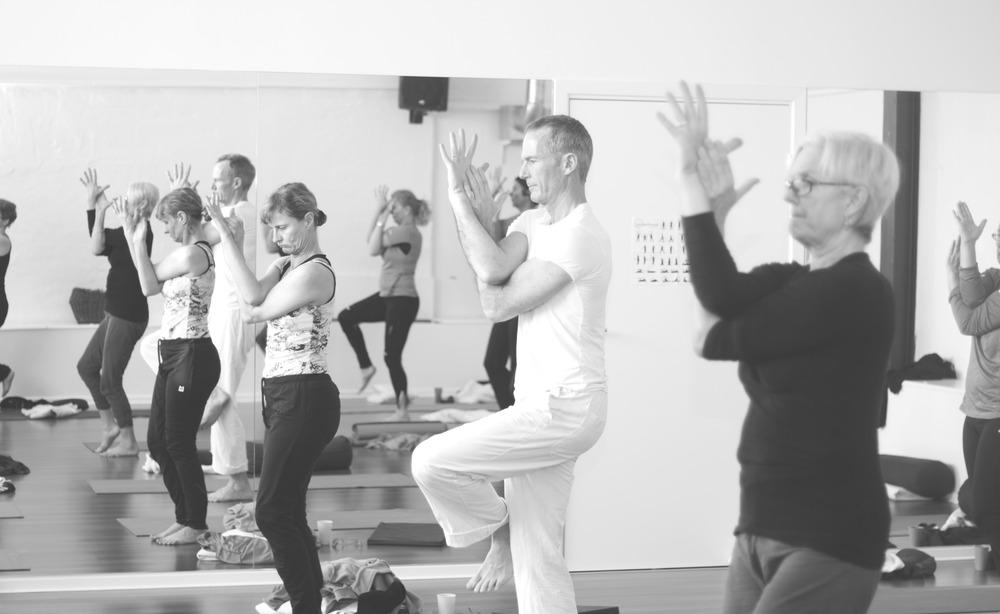 Flere typer yoga i Studie1a