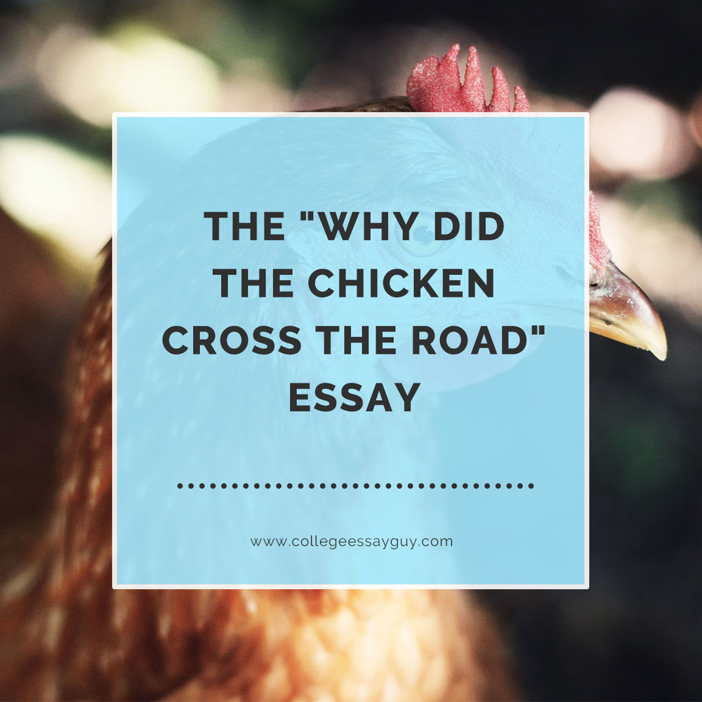 The Why Did the Chicken Cross the Road Essay