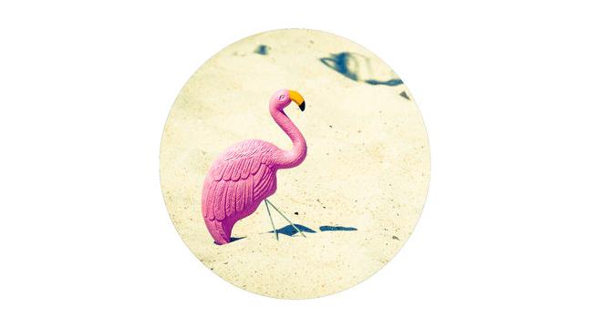 flamingo.png