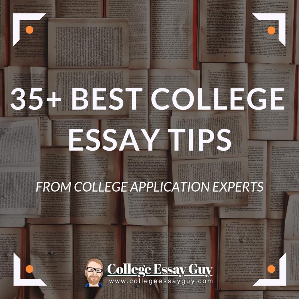 essay consulting