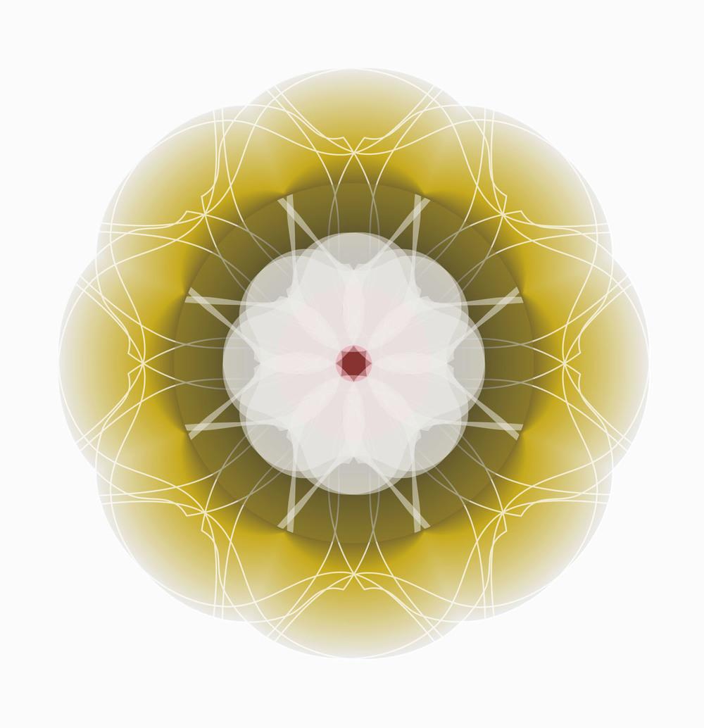 ©clairebrooker_kimono_flower_gold.jpg