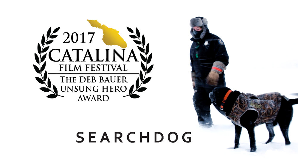 SEARCHDOG Wins 2017 Unsung Hero Award