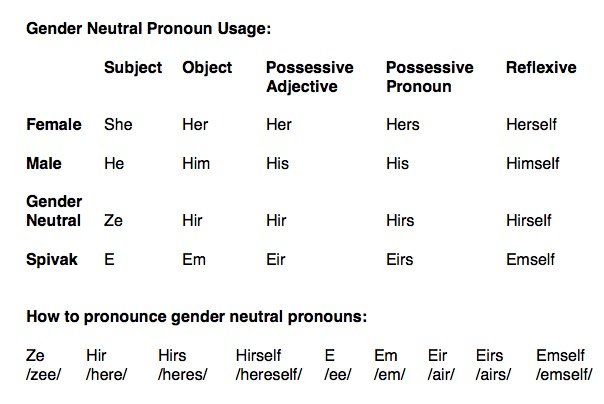 Gender Neutral Pronouns. Source: web.mit.edu (or the smartest people on earth)
