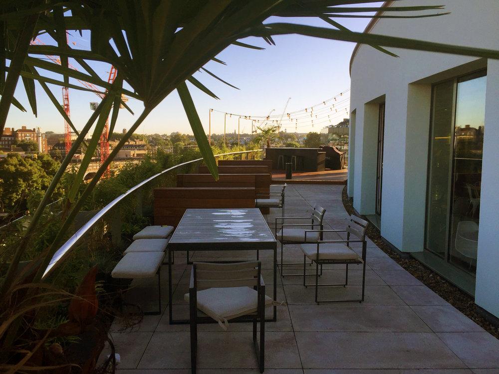 Roof top garden.jpg