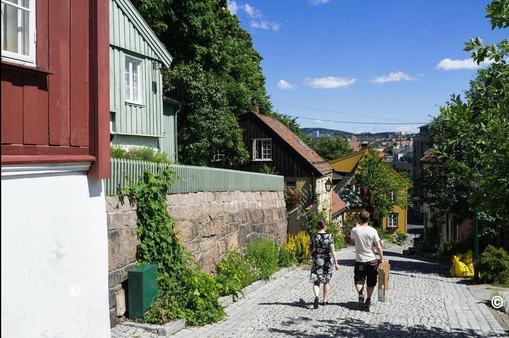 Oslo-dsc13 - Copy.jpg