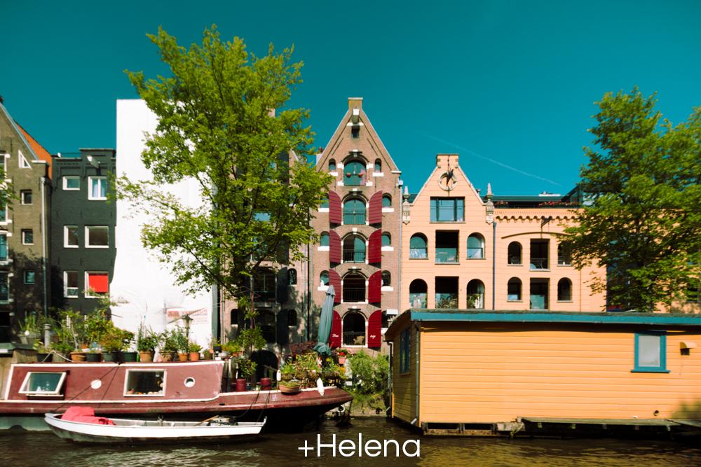 +Helena.jpg