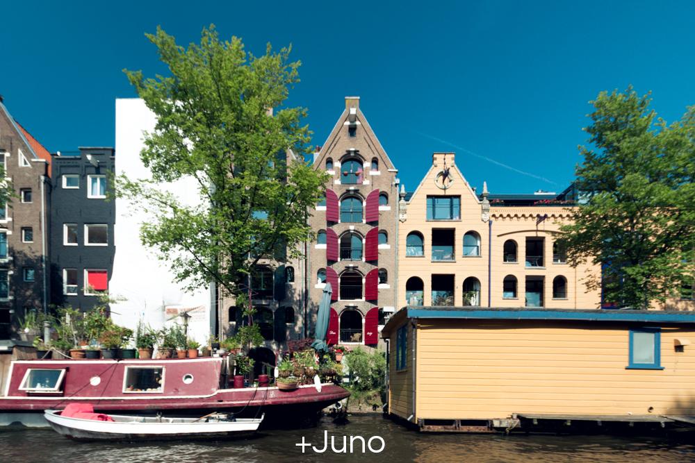 +Juno.jpg