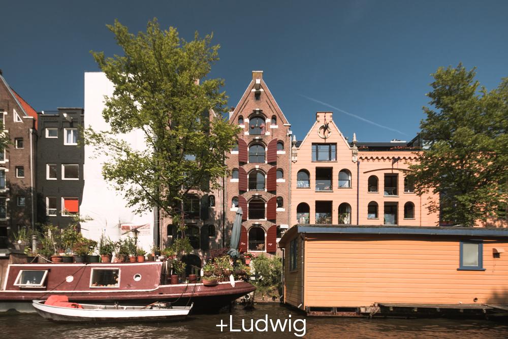 +Ludwig.jpg