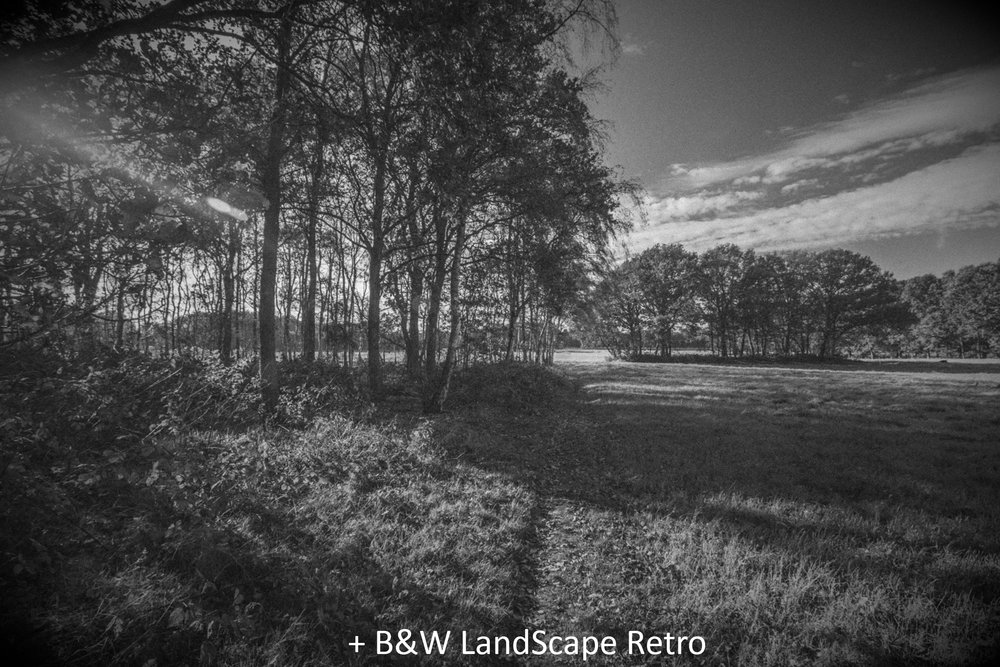 BW LandScape Retro.jpg