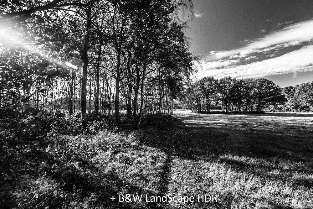 BW LandScape HDR.jpg