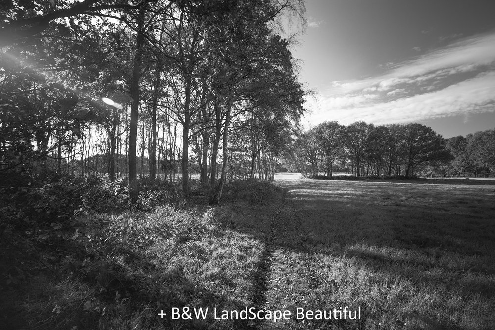 BW LandScape Beautiful.jpg