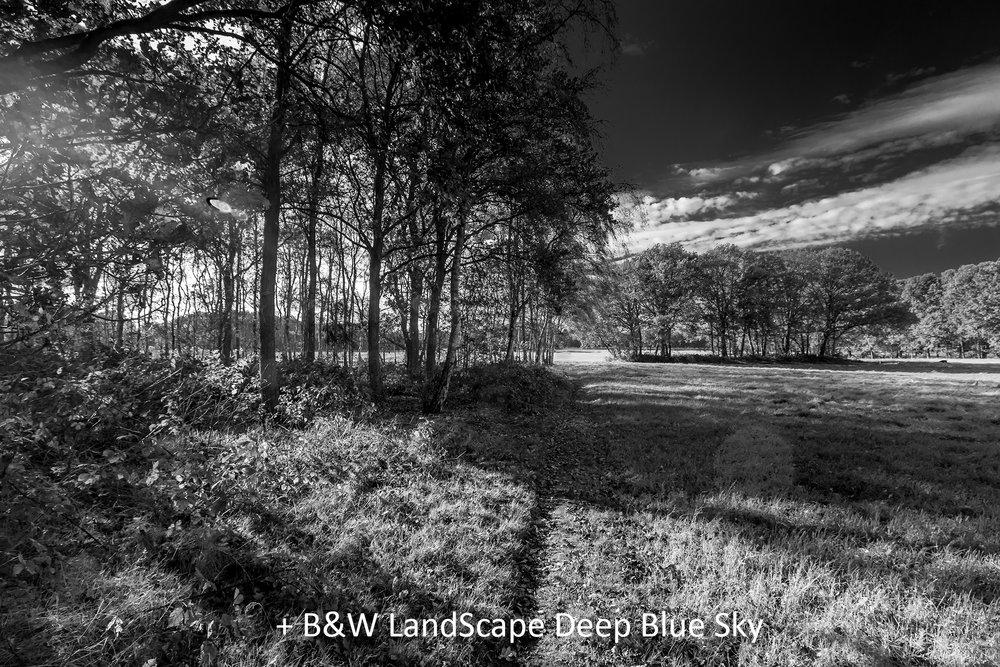 BW LandScape Deep Blue Sky.jpg