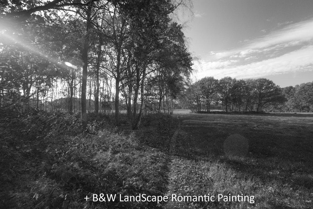 BW LandScape Romantic Painting.jpg