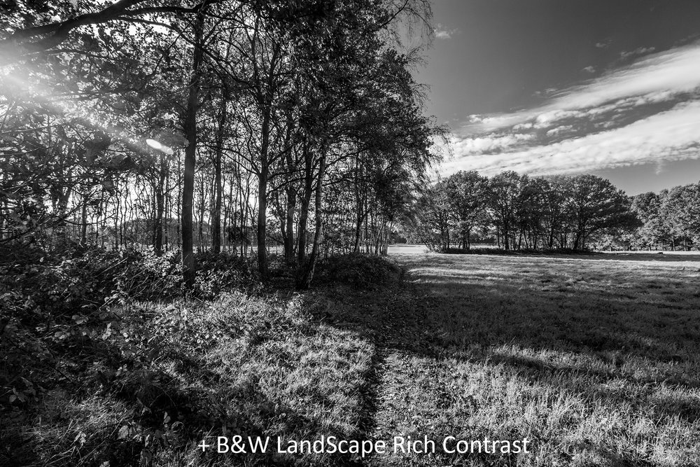 BW LandScape Rich Contrast.jpg