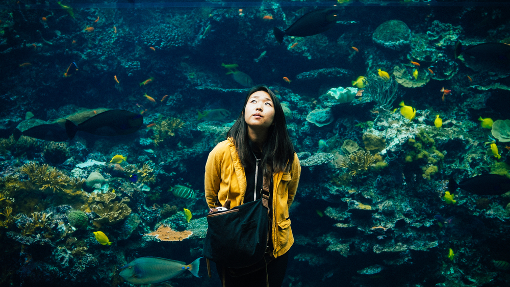 Aquarium-Fujifilm-X100s-4.jpg