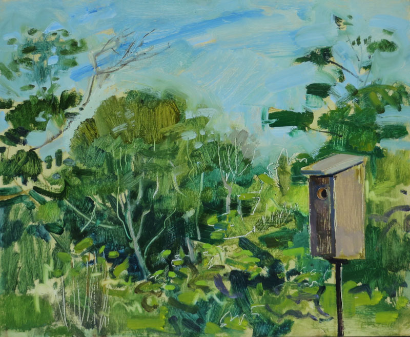 Bluebird Nest Box, July