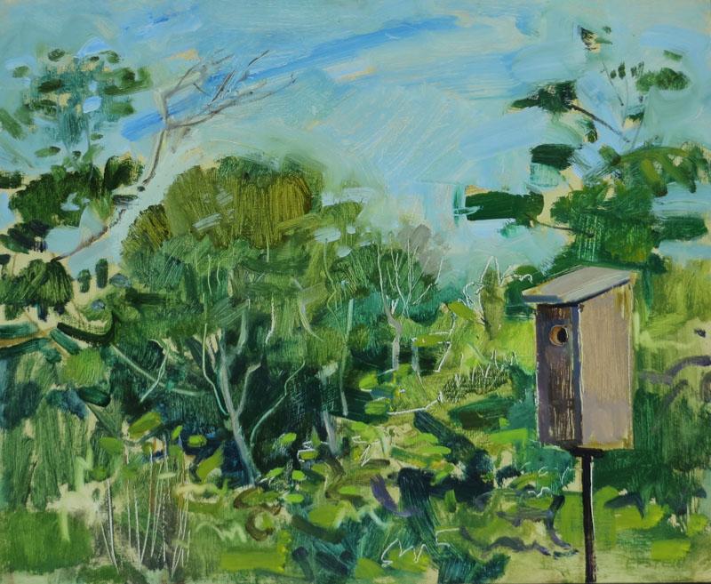 Bluebird Nest Box, July