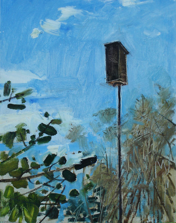 Bluebird Nest Box, April