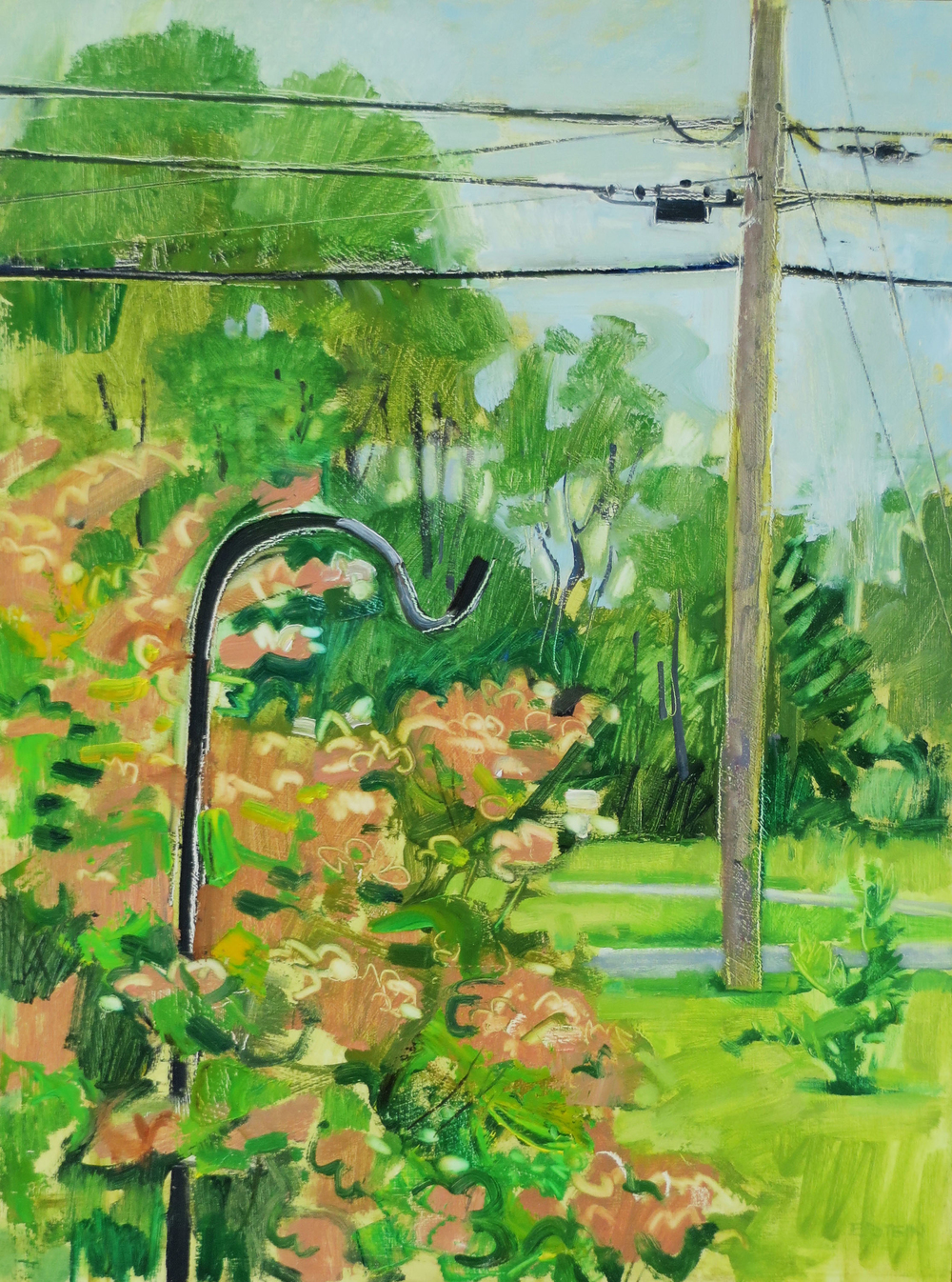 Shepherd's Hook and Telephone Pole