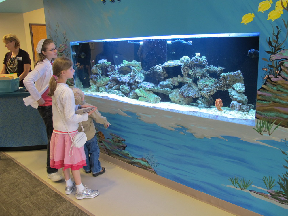 grace community chapel church aquarium.JPG