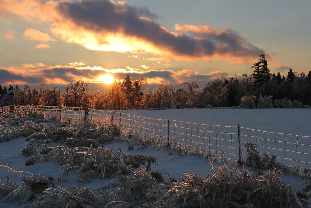 frozen_sun.jpg