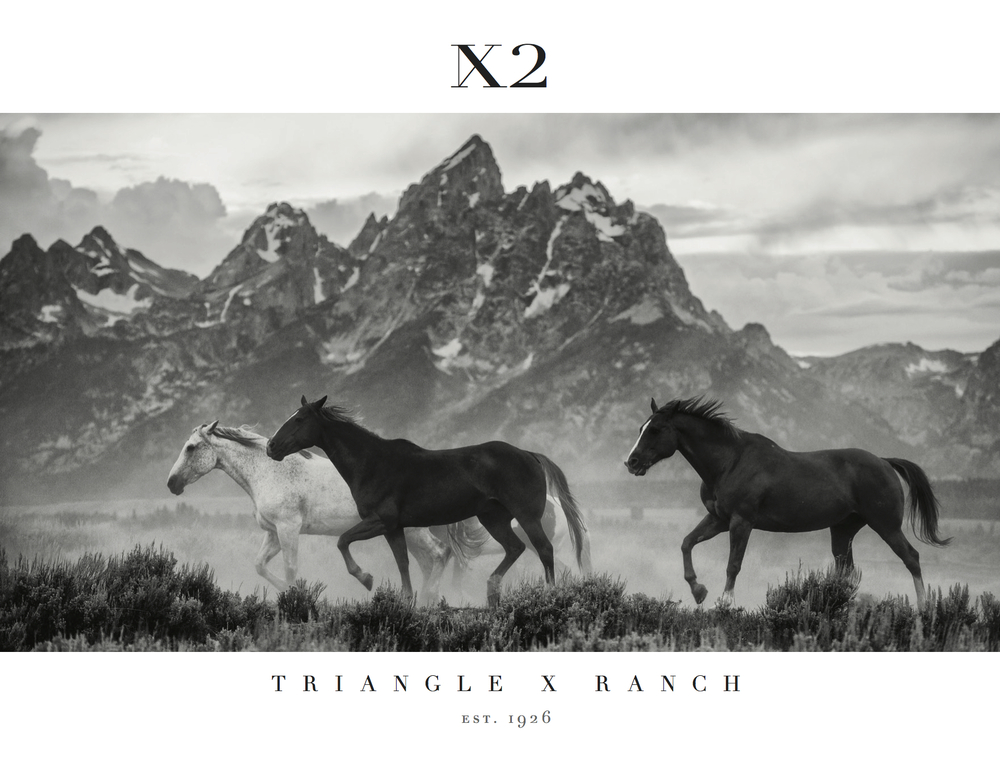 Triangle X 90th Anniversary Coffee Table Book