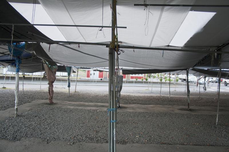 Hilo_Farmers_Market_empty_Stalls.jpg