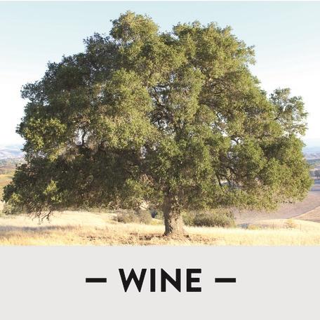 Wine_Square_tree_v2.jpg