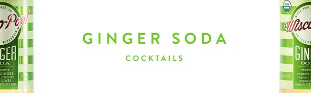 Ginger-Soda-Banner.jpg