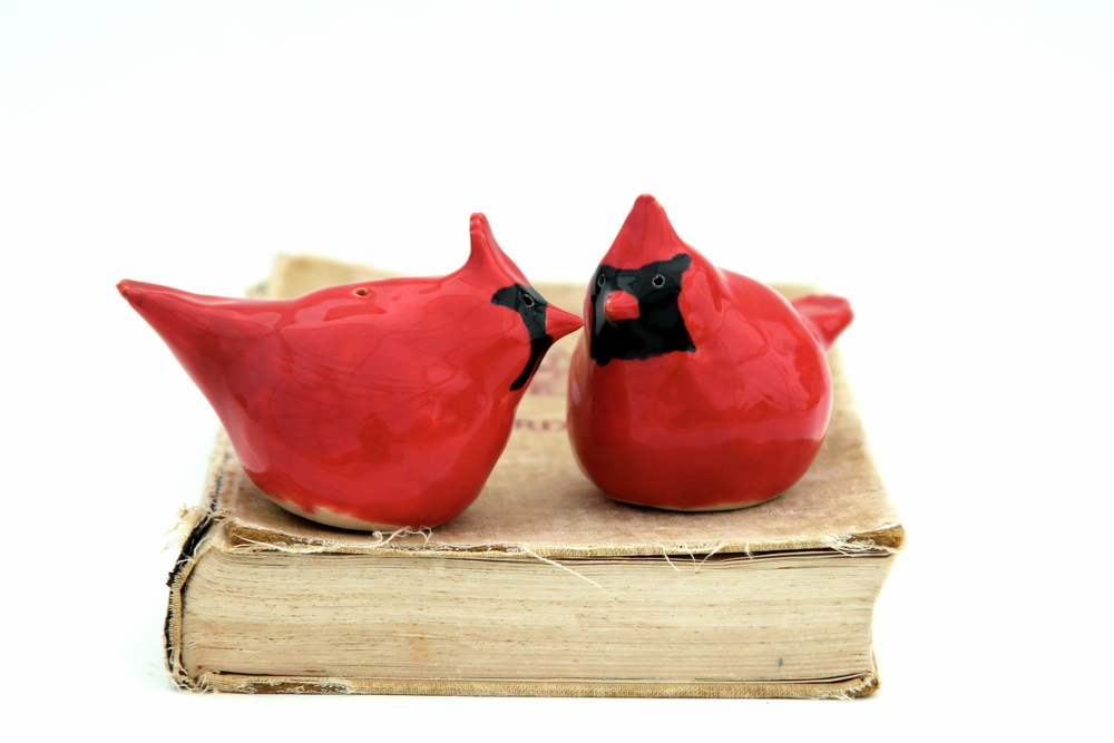 Porcelain Birds Salt & Pepper Shakers