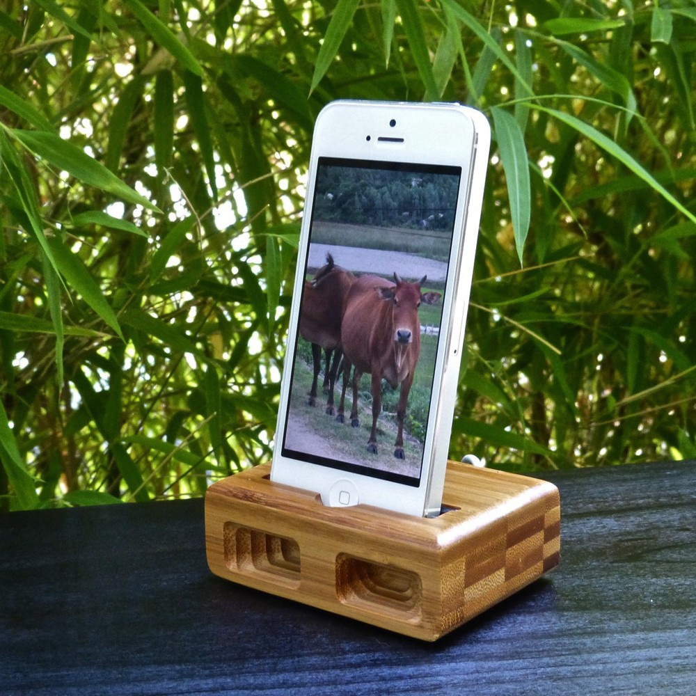 iPhone5-dock-bamboo.JPG