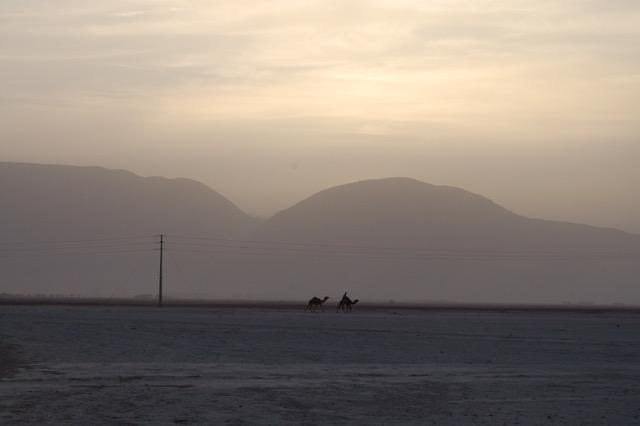 Wadi Rum caravan