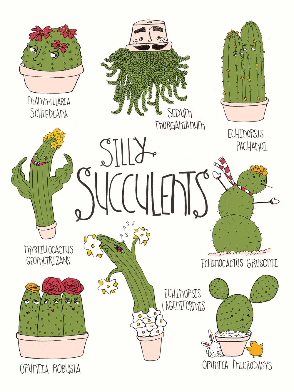 Silly Succulents 9x12.jpg