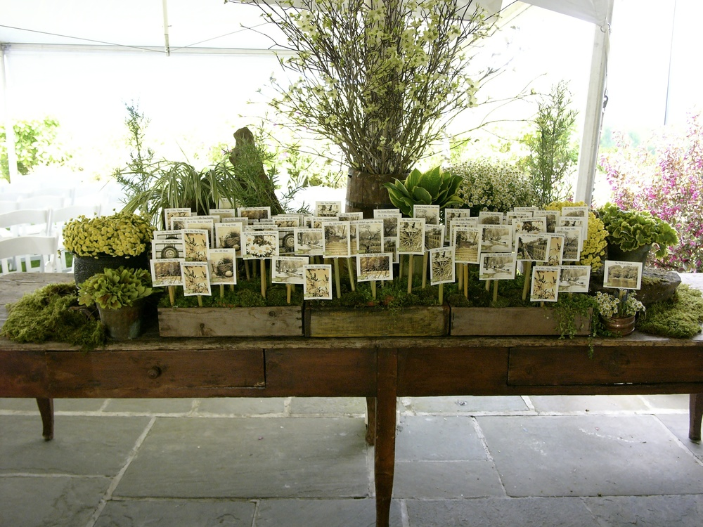 Speciality Escort Card Table