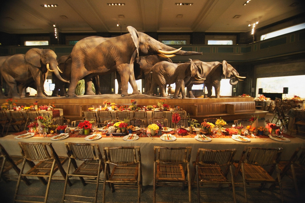 Tablescape with Elephants