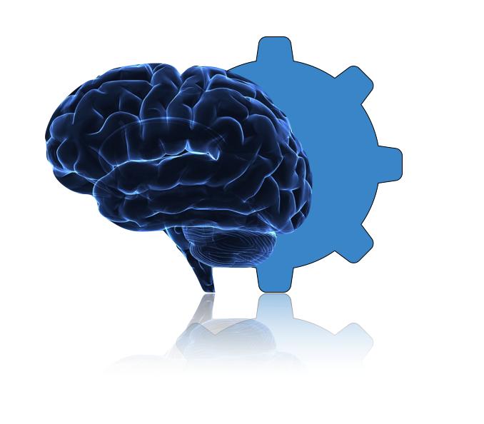 brain_gear.jpg