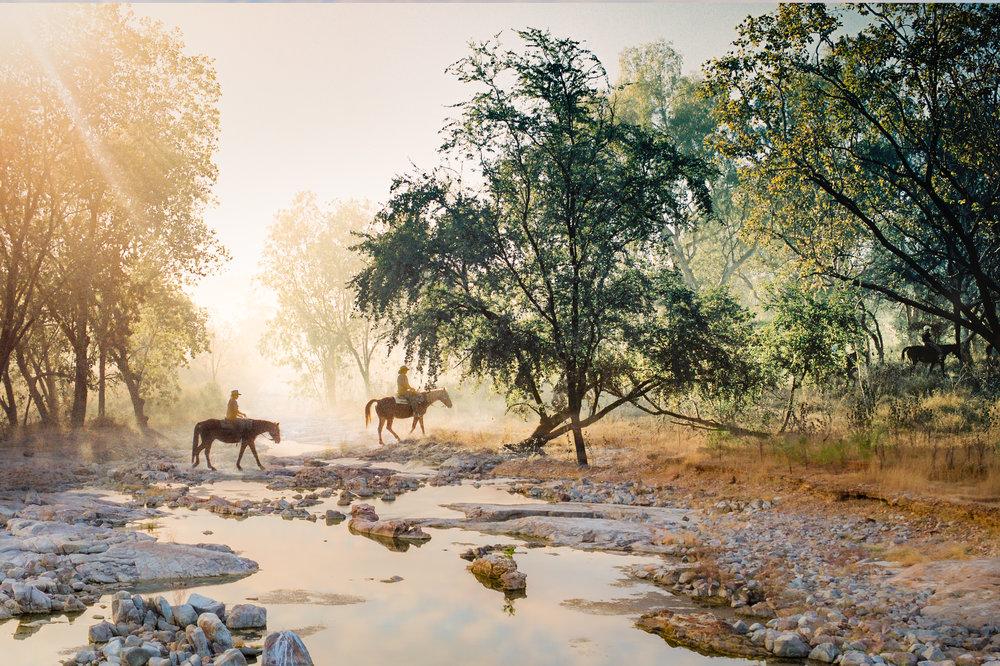 horses-Edit.JPG