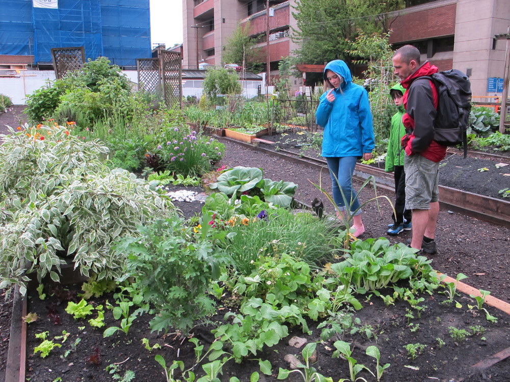 A new 'place-keeping' approach? Community garden in Vancouver.