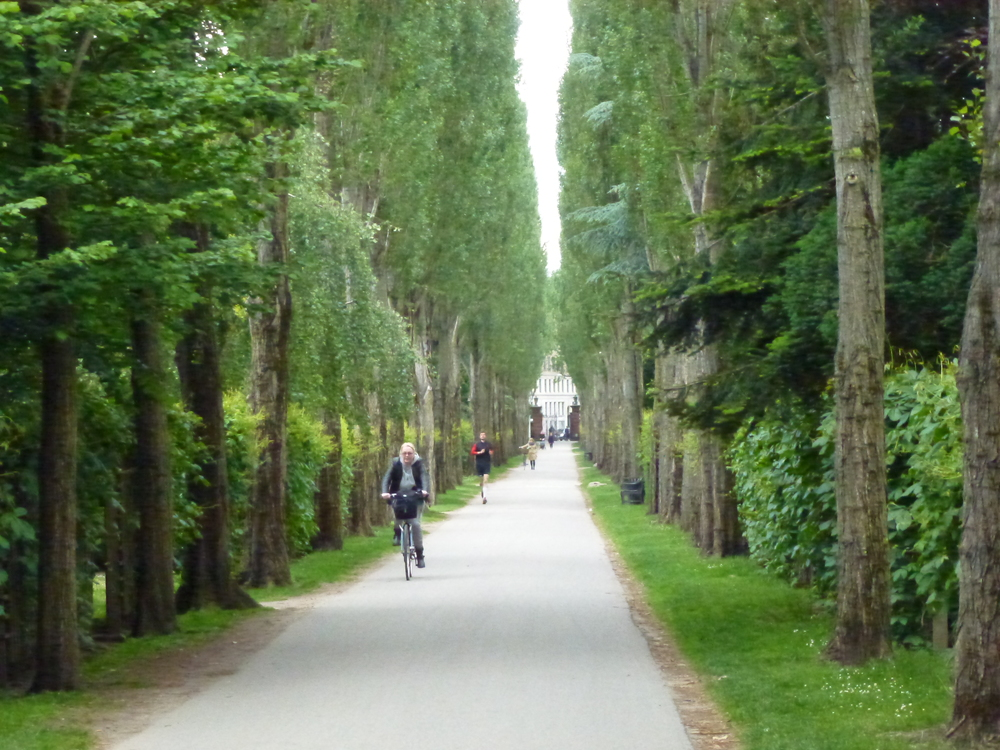 A cemetery in Copenhagen, well-used by walkers, joggers and cyclists