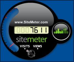 Sitemeter widget