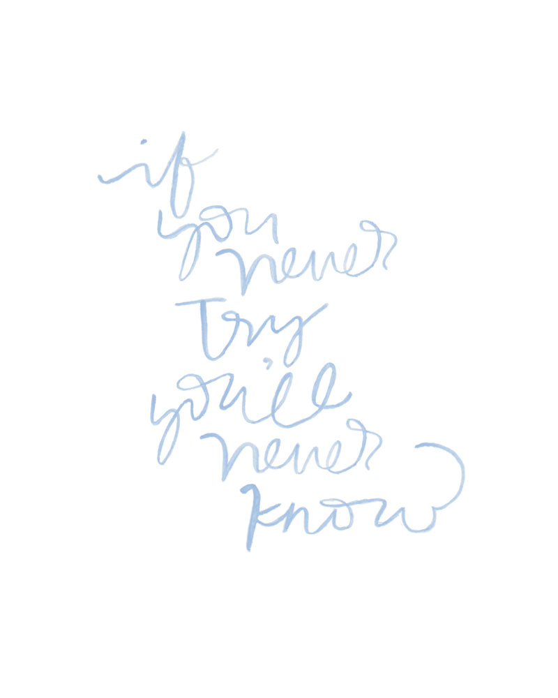 If you never try you'll never know || Pommel Lane