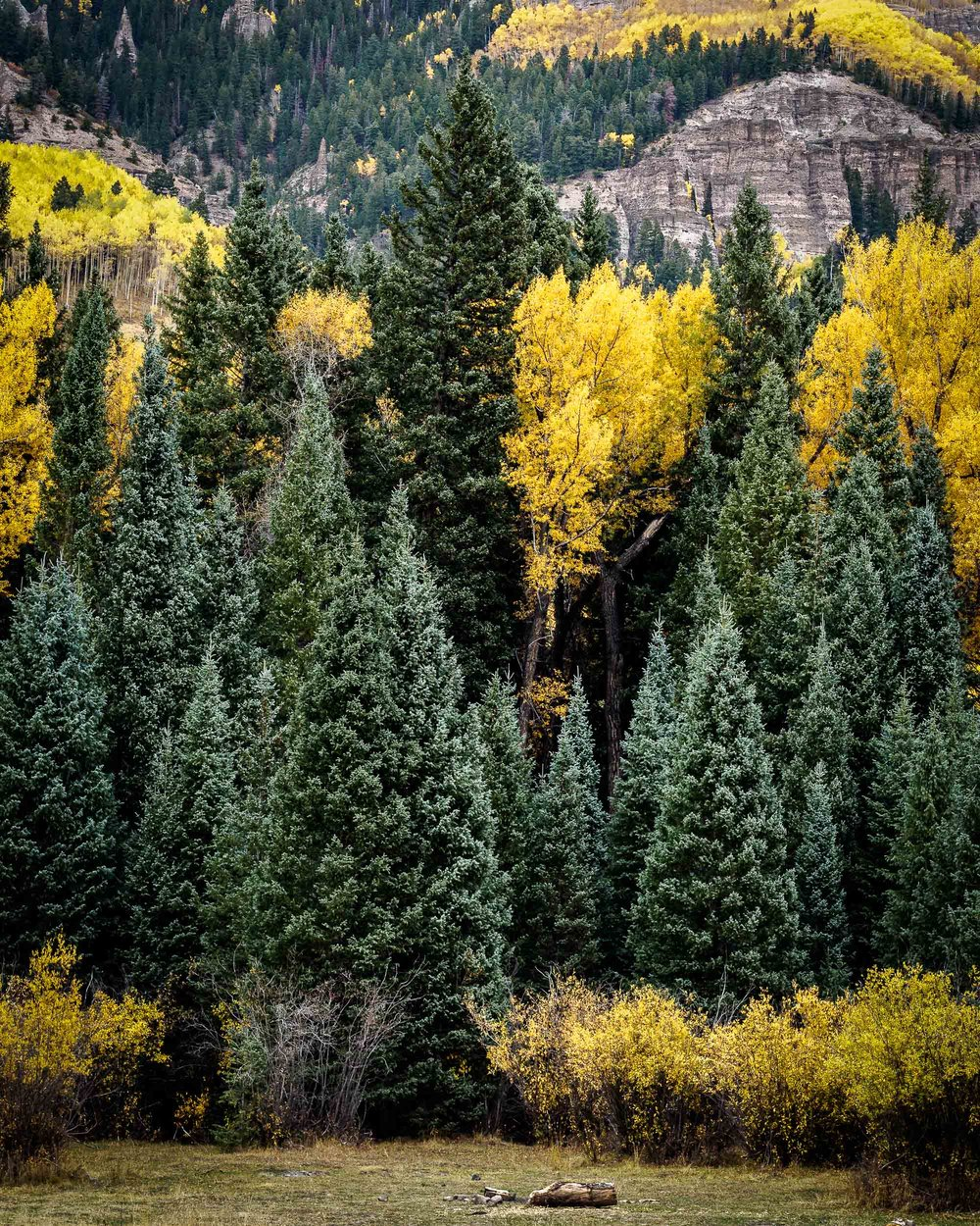colorado colors-5.jpg