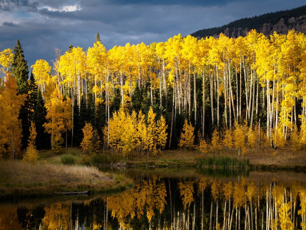 colorado colors-6.jpg