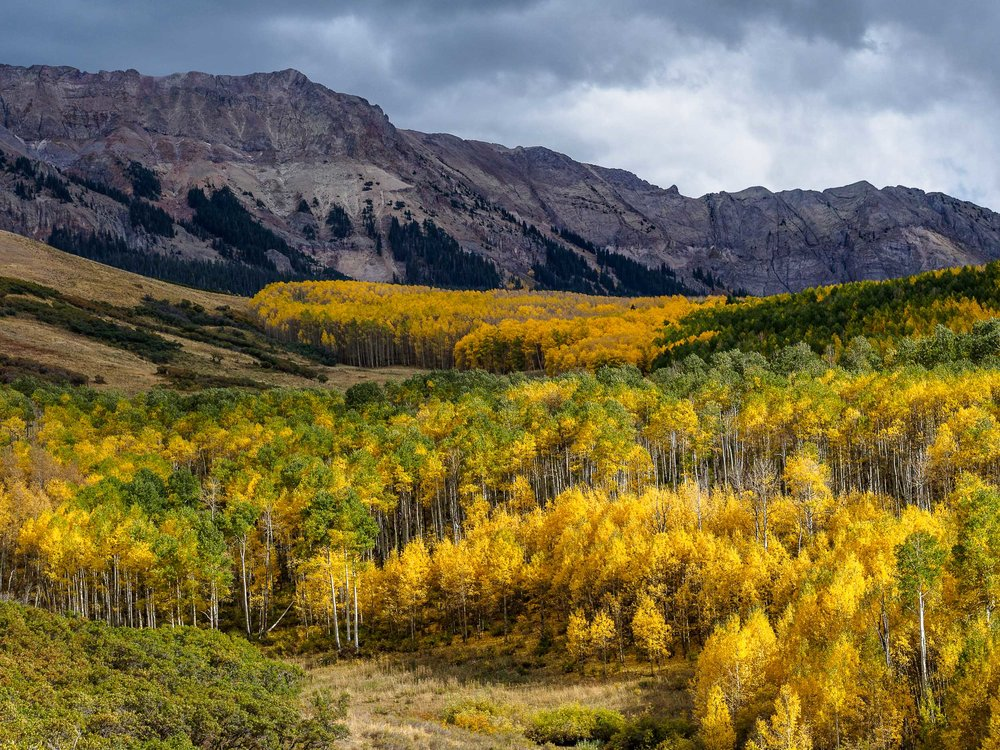 colorado colors-15.jpg