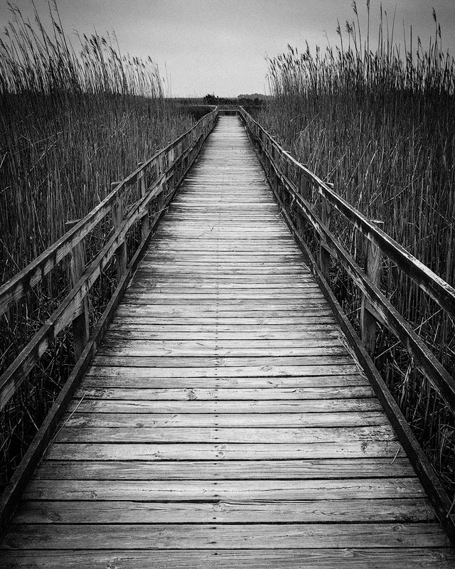 A boardwalk at Sandbridge beach, Virginia.