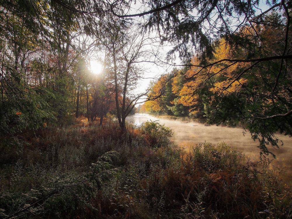 Blackwater River, Canaan Valley, West Virginia.