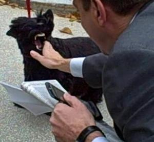 Even First Dog, Barney Bush bit a reporter.