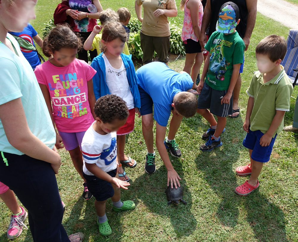 kids interacting with Blanding's turtle